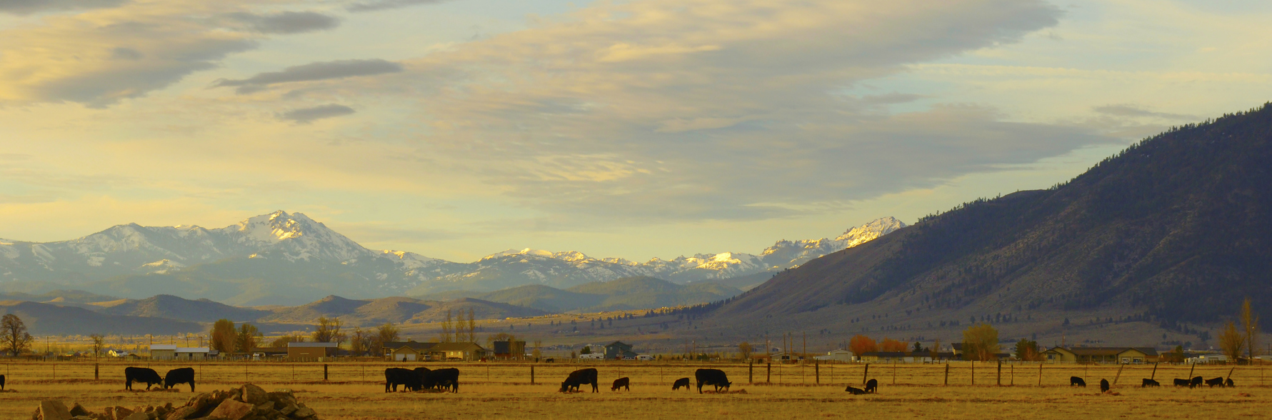 Late afternoon at Carson Valley Nevada